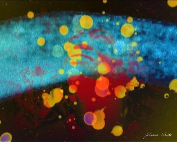impressions-johanna-vaude-cinematon-gerard-courant-super-8-film-jazz-pop-art