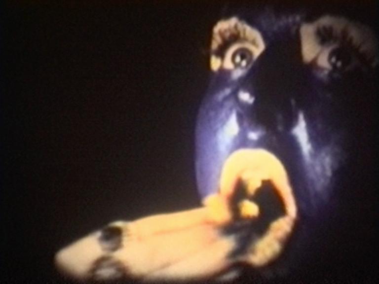 clea brunschwig