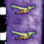 notre icare short film by johanna vaude hand painting Super 8 films photogrammes