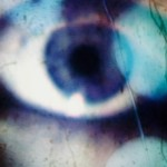 johanna-vaude-oeil-sauvage_01