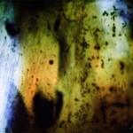johanna-vaude-oeil-sauvage_05