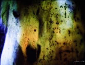 l'oeil sauvage par johanna vaude film super 8 experimental et hybride
