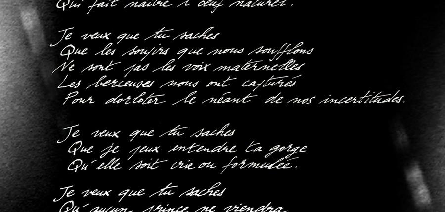 johanna-vaude-poem-poetry_01