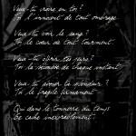 johanna-vaude-poem_02