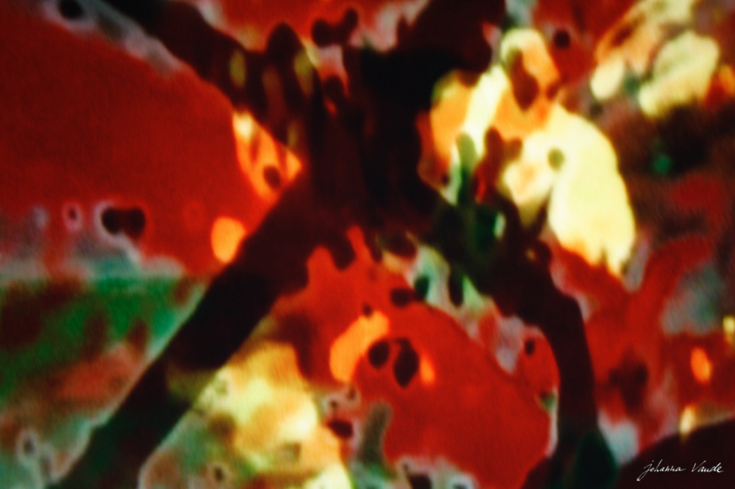 johanna-vaude-samourai-experimental-film_12