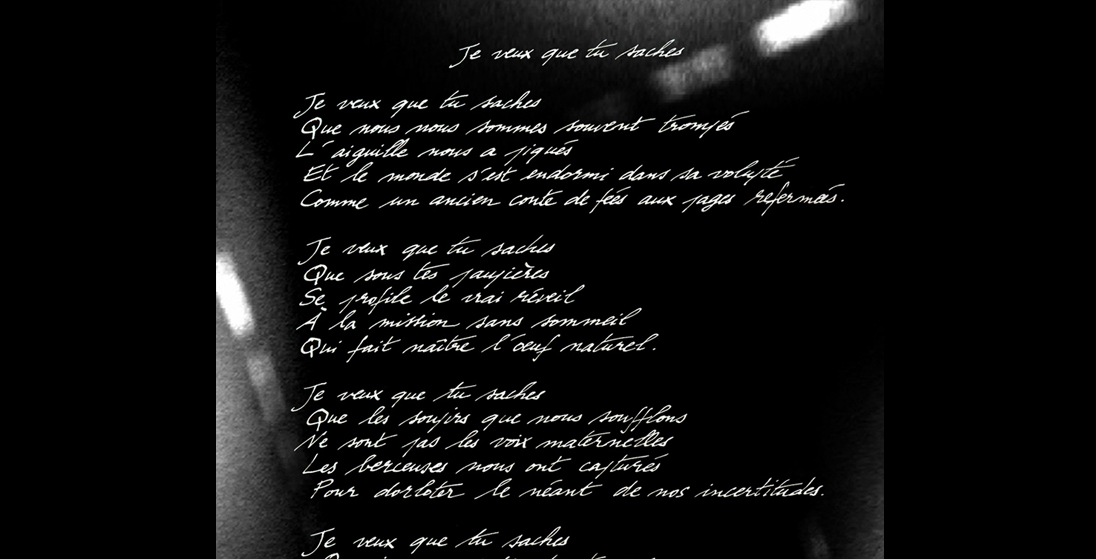 poem-johanna-vaude-gallery