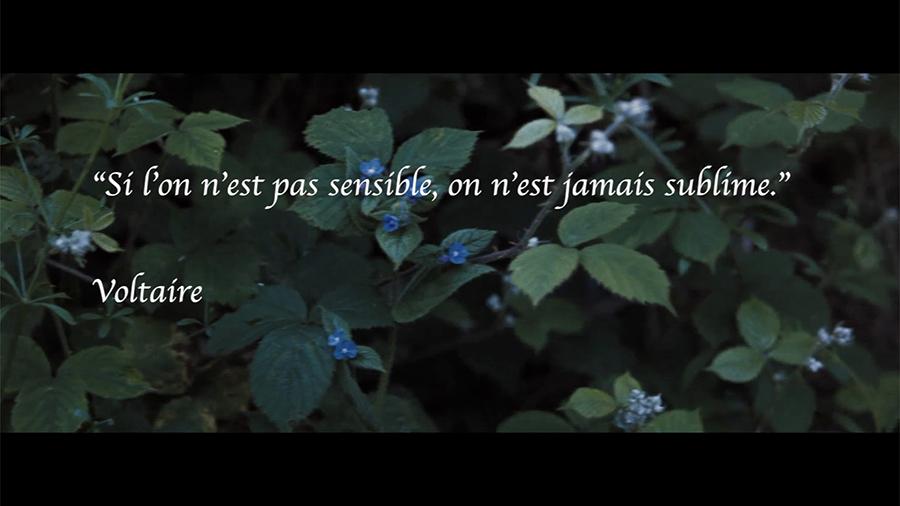 Un peu de romantisme par Johanna Vaude