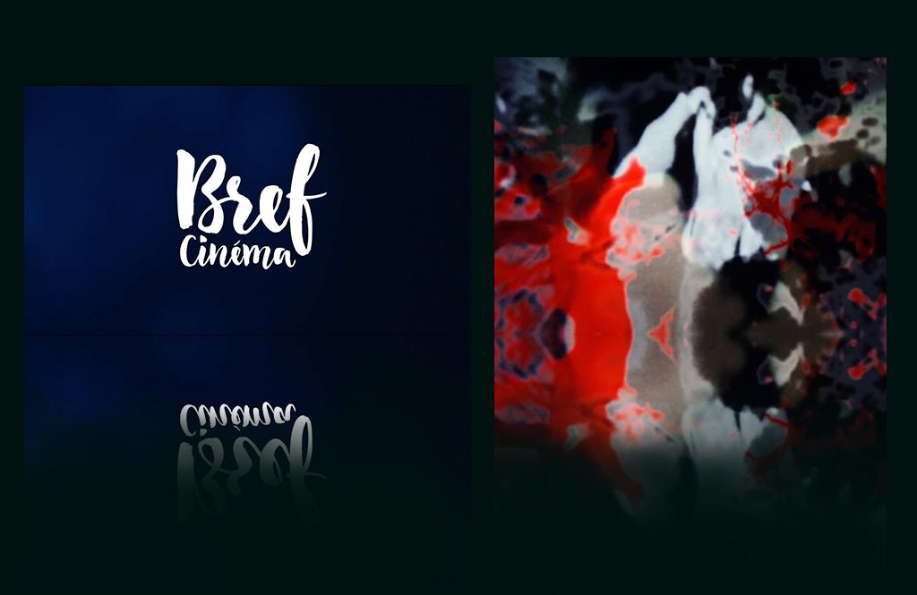 Bref-cinema-court-metrage-johanna-vaude-samourai